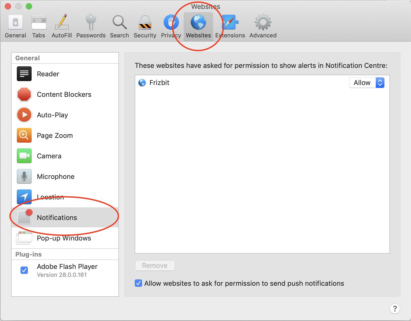 Safari Settings about Notifications