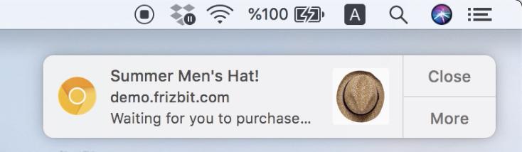 web-push-cart-abandonment-screenshot