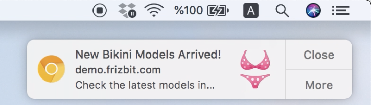 web-push-category-retargeting-screenshot