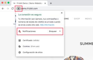 Cómo Permitir Notificaciones Web Push